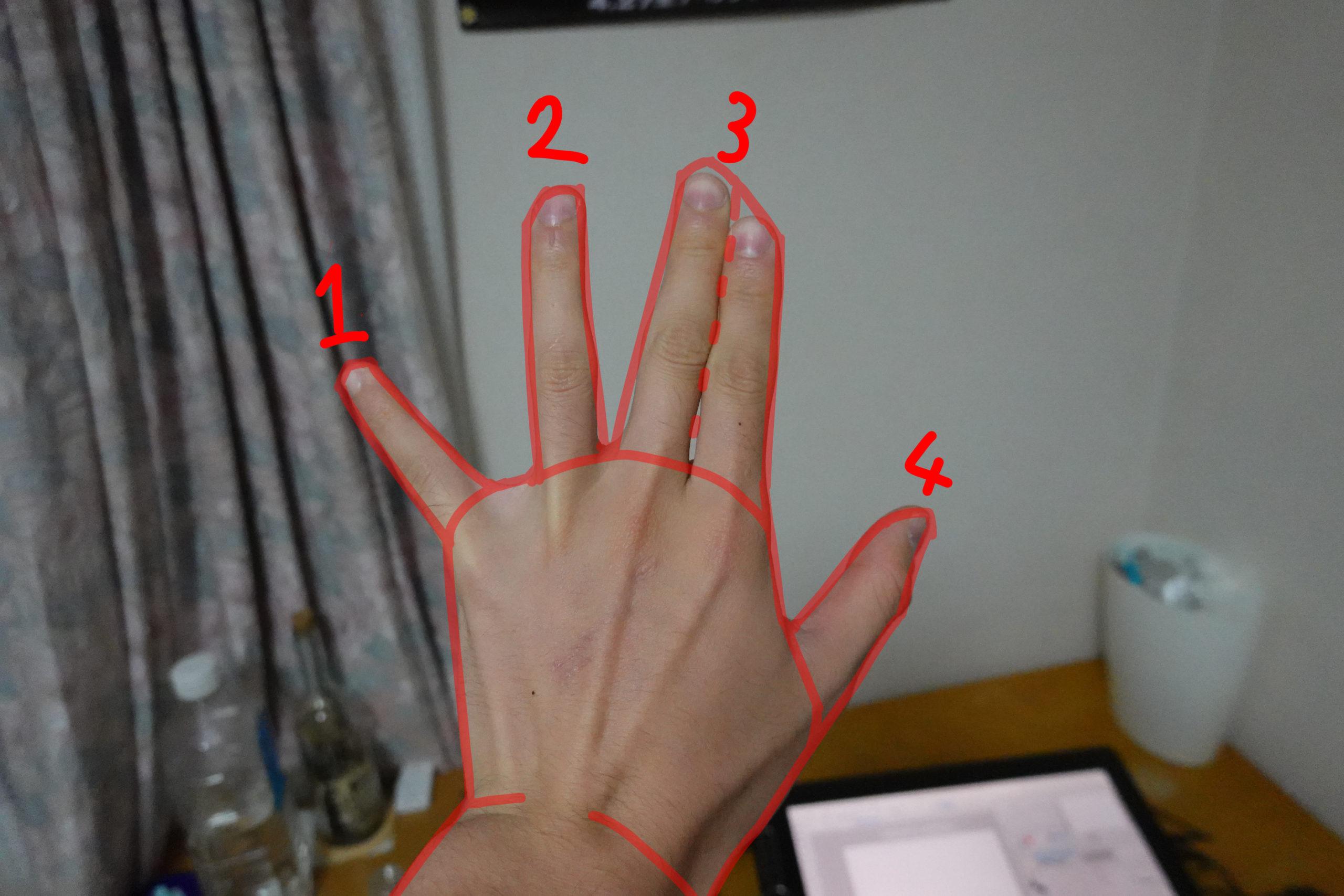 指の描き方