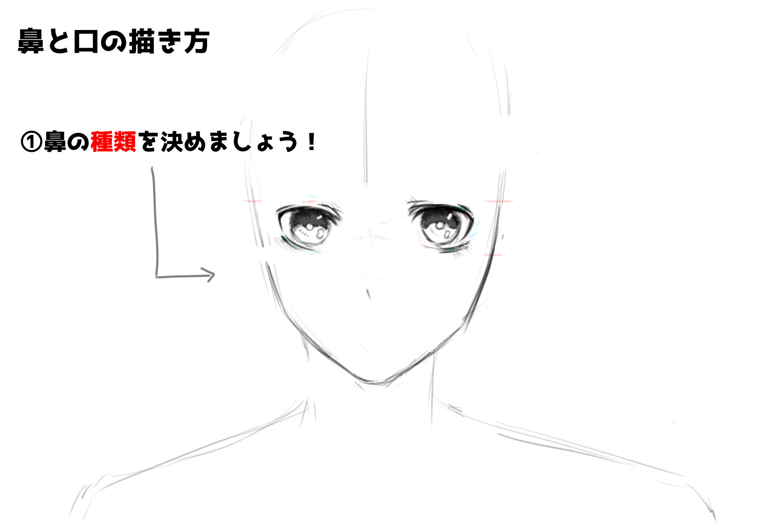 鼻の描き方①